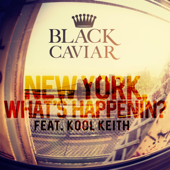 New York, What's Happenin'? (feat. Kool Keith)