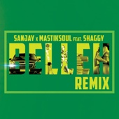 Belleh (Remix) [feat. Shaggy]