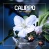 Mr. Love You - Single, Calippo