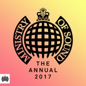 Various Artists - The Annual 2017 - Ministry of Sound artwork