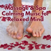 Massage & Spa Calming Muisc for Relaxed Mind: Zen Garden, Meditation, New Age, Deep Sleep, Yoga Time, Mantra, Nature Sounds, Chakra Balancing