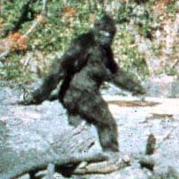 BigFoot Live