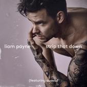 [Download] Strip That Down (feat. Quavo) MP3