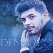 Demarco Flamenco
