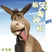 搞笑疯神榜(微信号:lovemaolv) - 主持人小毛驴就是我