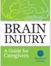Brain Injury A Guide For Caregivers