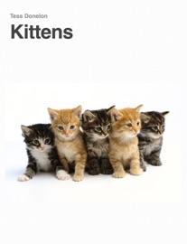 Kittens - Tess Donelon Book