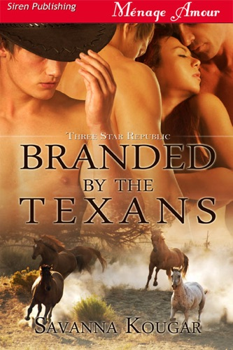 Branded By the Texans Three Star Republic