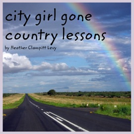 CITY GIRL GONE COUNTRY LESSONS