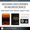 Neuroscience What You Need To Know Collection