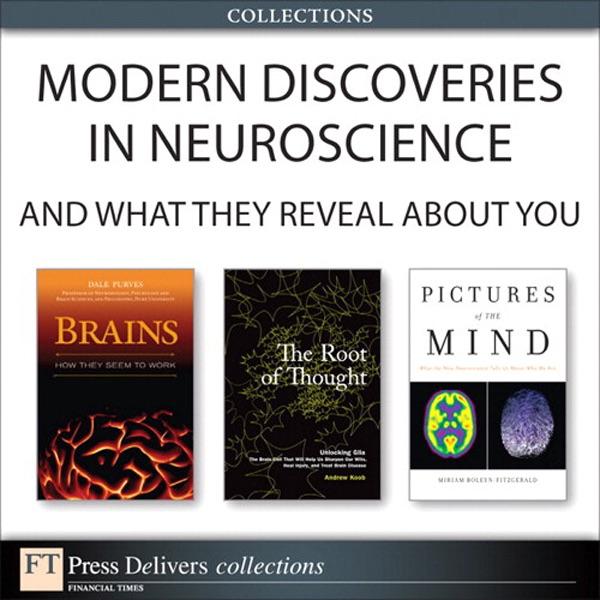 Neuroscience Dale Purves Pdf