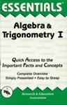 The Essentials Of Algebra  Trigonometry I