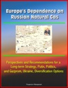 Europes Dependence On Russian Natural Gas Perspectives And Recommendations For A Long-term Strategy Putin Politics And Gazprom Ukraine Diversification Options
