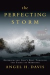 The Perfecting Storm