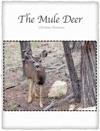 The Mule Deer