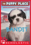 The Puppy Place 24 Bandit