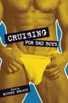 Cruising For Bad Boys