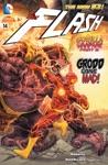 The Flash 2011-  14