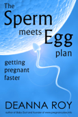 The Sperm Meets Egg Plan: Getting Pregnant Faster