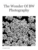 Garrett Chinn - The Wonder Of BW Photography  artwork