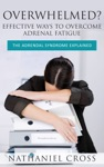 Overwhelmed Effective Ways To Overcome Adrenal Fatigue