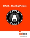 OAuth - The Big Picture
