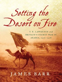 SETTING THE DESERT ON FIRE: T. E. LAWRENCE AND BRITAINS SECRET WAR IN ARABIA, 1916-1918