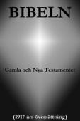 Guds Ord & Den Heliga Skrift - Bibeln, Gamla och Nya Testamentet (1917 års översättning) bild