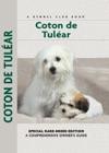Coton De Tulear
