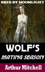 Wolfs Mating Season Bred By Moonlight