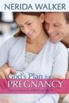Gods Plan For Pregnancy