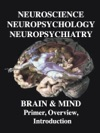 NEUROSCIENCE NEUROPSYCHOLOGY NEUROPSYCHIATRY BRAIN  MIND  Primer Overview  Introduction