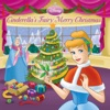 Disney Princess Cinderellas Fairy Merry Christmas