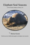 Elephant Seal Seasons At The Piedras Blancas Colony CA