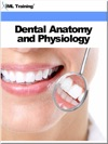 Dental Anatomy And Physiology Dentistry