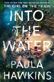 Into the Water book summary