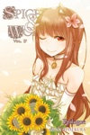 Spice And Wolf Vol 17 Light Novel