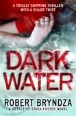 Robert Bryndza - Dark Water artwork