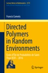Directed Polymers In Random Environments