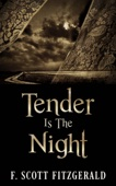 F. Scott Fitzgerald - Tender Is The Night  artwork