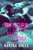 Karina Halle - Before I Ever Met You  artwork