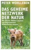 Peter Wohlleben - Das geheime Netzwerk der Natur Grafik