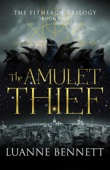 Luanne Bennett - The Amulet Thief  artwork