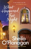 Sheila O'Flanagan - What Happened That Night artwork