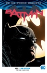Batman Vol 1 I Am Gotham