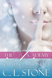 THE ACADEMY - SOUND OF SNOWFALL