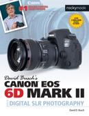 David D. Busch - David Busch's Canon EOS 6D Mark II Guide to Digital SLR Photography kunstwerk