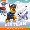 Ice Team PAW Patrol Enhanced Edition