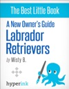 A New Owners Guide To Labrador Retreivers