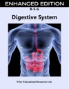 Digestive System Enhanced Edition